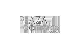 Plaza Cameras